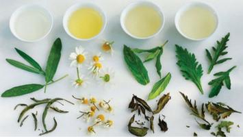 Herbalsauna si efectul plantelor aromatice